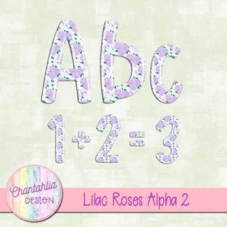 lilac roses alpha