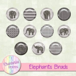 elephants brads