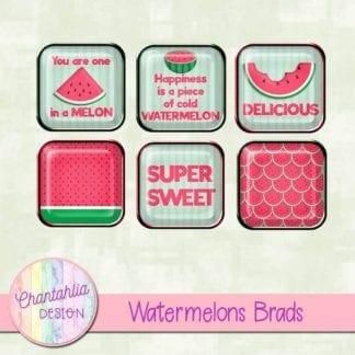 watermelons brads