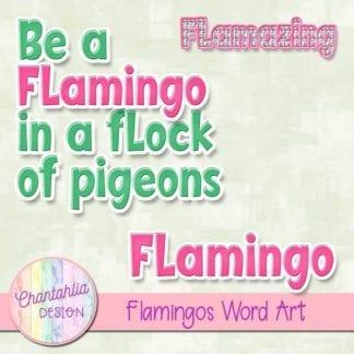 flamingos word art