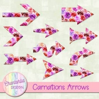 carnations arrows