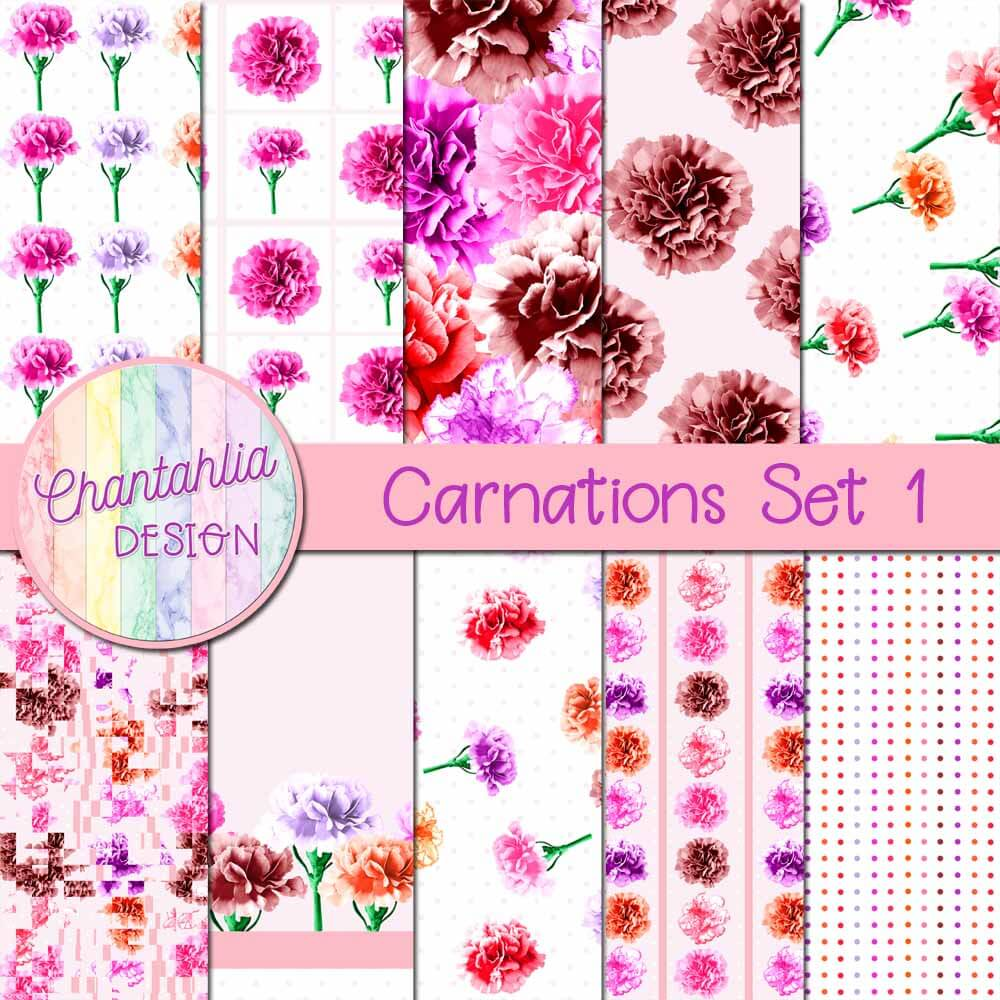 carnations digital papers