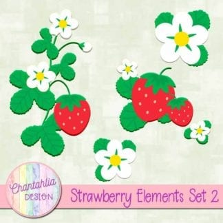 strawberry design elements