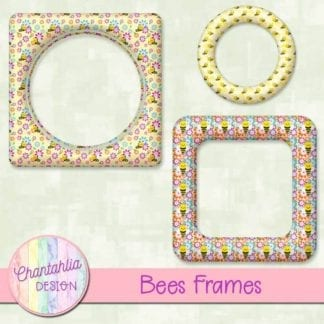 bees frames