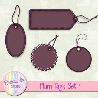 plum tags