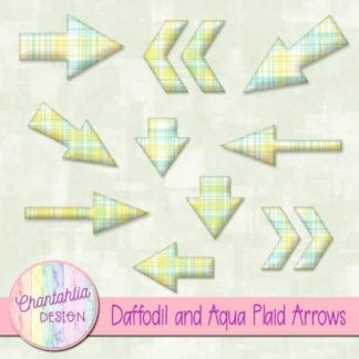 daffodil and aqua plaid arrow