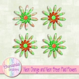 neon orange and neon green plaid flowers
