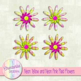 neon yellow and neon pink plaid flowers