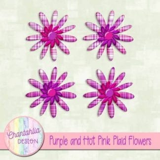 purple and hot pink plaid flowers