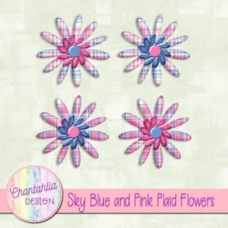 sky blue and pink plaid flowers