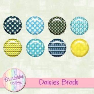 free daisies scrapbook brads