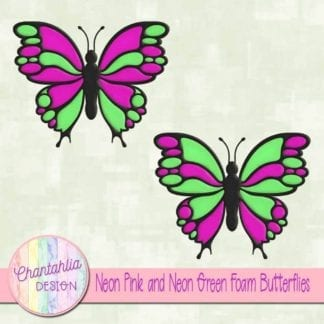 free neon pink and neon green foam butterflies