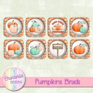 free pumpkins brads