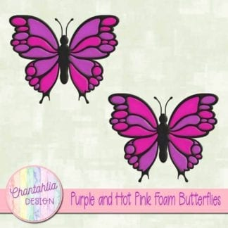 free purple and hot pink foam butterflies