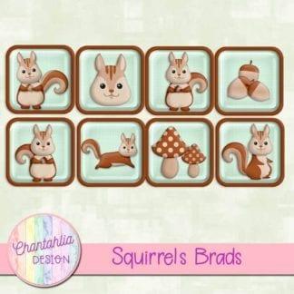 free squirrels brads