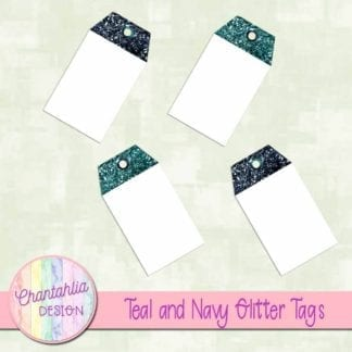 teal and navy glitter tags