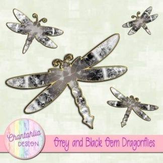 grey and black gem dragonflies