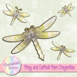 grey and daffodil gem dragonflies
