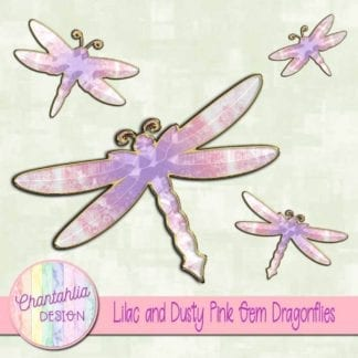 lilac and dusty pink gem dragonflies