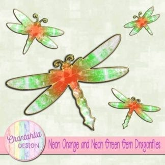 neon orange and neon green gem dragonflies