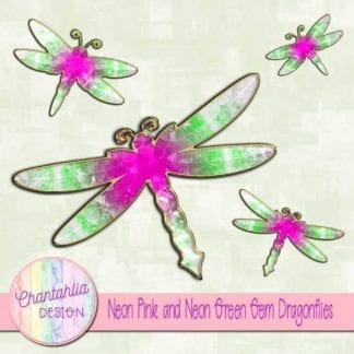 neon pink and neon green gem dragonflies