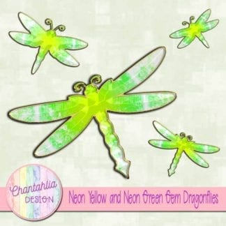 neon yellow and neon green dragonflies