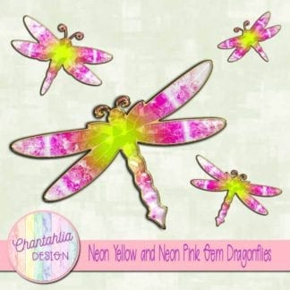 neon yellow and neon pink dragonflies
