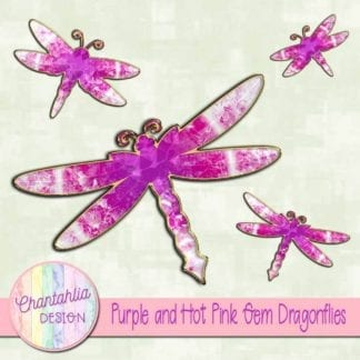 purple and hot pink gem dragonflies