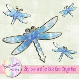 sky blue and rust brown gem dragonflies