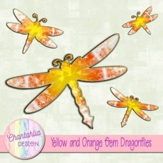 yellow and orange gem dragonflies