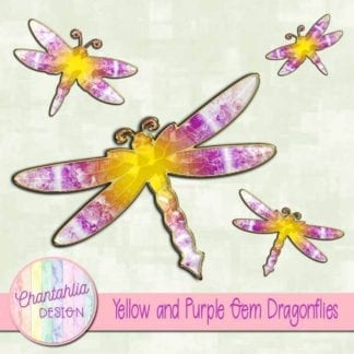 yellow and purple gem dragonflies