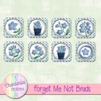 free forget me not brads