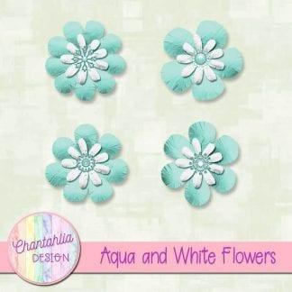 Free aqua and white flowers