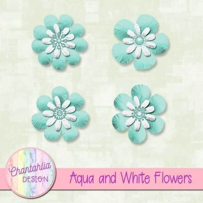 Free aqua and white flowers