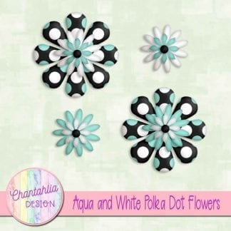 aqua and white polka dot flowers