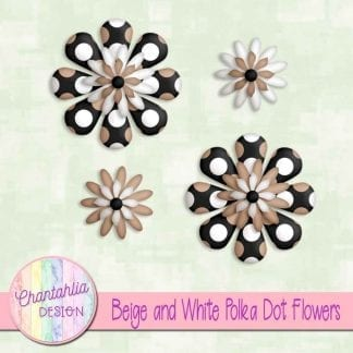 beige and white polka dot flowers