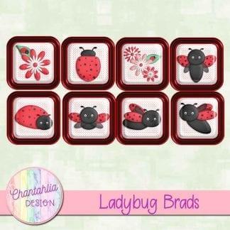 free ladybug digital brads
