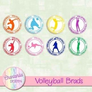 free volleyball brads