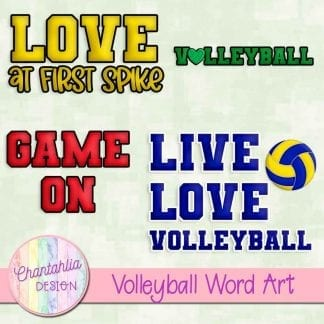 free word art in a volleyball theme