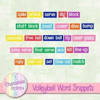 free volleyball word snippets