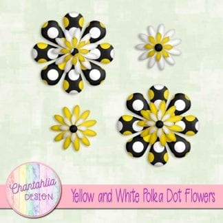 yellow and white polka dot flowers