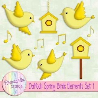 Free daffodil spring birds design elements