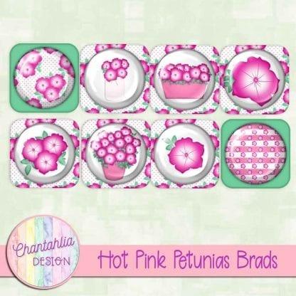 free hot pink petunias brads