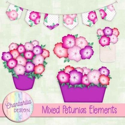 Free mixed colour petunias design elements