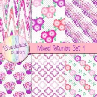 Free mixed colour petunias digital papers