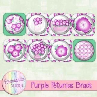 Free purple petunias brads