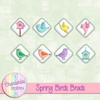 Free brads in a Spring Birds theme