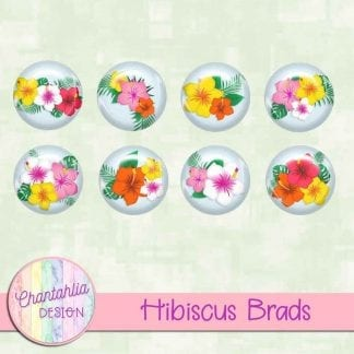 Free brads in a Hibiscus theme.