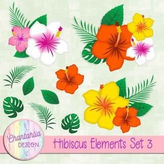 Free design elements in a Hibiscus theme.