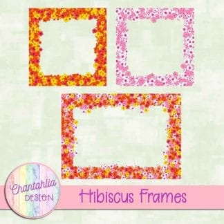 Free digital frames in a Hibiscus theme.